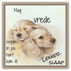 Afrikaanse Quotes, Goeie Nag, Good Night Quotes, Dachshund Love, Love Quotes For Him, Christmas Wishes, Cocktail Recipes, Words, Lilac