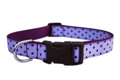 Sassy Dog Wear 10-14-Inch Orchid/Navy Polka Dot Dog Collar, Small * You can find out more details at the link of the image. (This is an affiliate link and I receive a commission for the sales) #Dogs