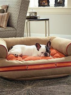 1000 images about pampered pets on pinterest pet beds