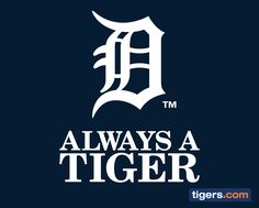 Always, Always, Always a Tiger!!!