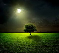 full moon pictures to pin | full_moon