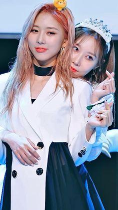 C Videos, Kpop Girl Bands, Jennie Lisa, Mamamoo, Video Editing, K Idols, Kpop Girls, Girl Group, Dream Catcher