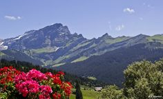 Le Culan, depuis la terrasse du restaurant du Golf © Francesca Martini www. Alps, Nice View, Martini, Landscapes, Golf, Restaurant, Mountains, Nature, Travel