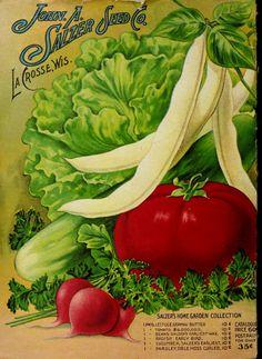John A. Salzer Seed Co.  1912 back cover