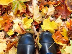 pinterest autumn - Cerca con Google