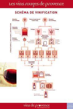 Vins rouges de Provence - Schéma de vinification - Cuisine et vins - Expolore the best and the special ideas about Wine tasting Sangria, Vin France, Guide Vin, Cocktails Vin, Wine Infographic, Die A, Provence, In Vino Veritas, Wine Cheese