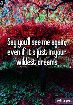 """""""Say you'll see me again, even if it's just in your wildest dreams"""""""