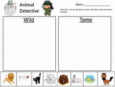 Animal Classification Posters and Games ~ Free Printables. Next semester in my Kindergarten/First Grade coop class I'll be teaching Animal Science, and I've ... Kindergarten Sorting Activities, Kindergarten Science, Animal Activities, Preschool Lessons, Kindergarten Reading, Preschool Worksheets, Science Activities, Emotions Preschool, Summer Worksheets