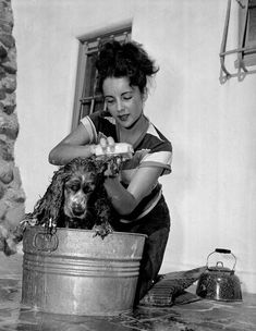Elizabeth Taylor scrubbing her pooch. Note tea kettle - at least the water is warm?