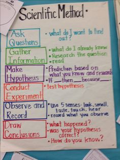 Scientific Method                                                                                                                                                      More