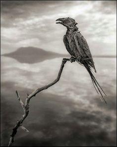 #EagleRock #Tanzania, East Africa. #Lake Natron