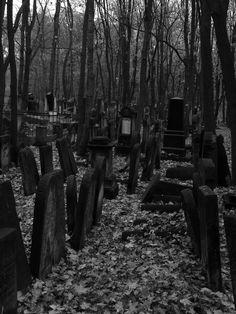 ~ forgotten graveyard ~ +