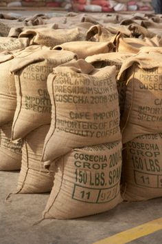 Coffee Packed in Burlap Sacks, Cofeco S.A. Dry Mill, Huehuetenango Department, Guatemala