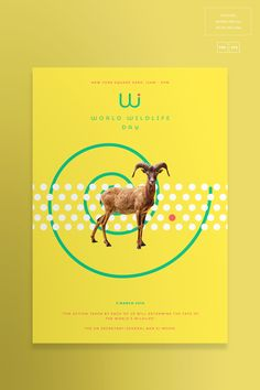 World Wildlife Day | Creative Templates Suite on Behance