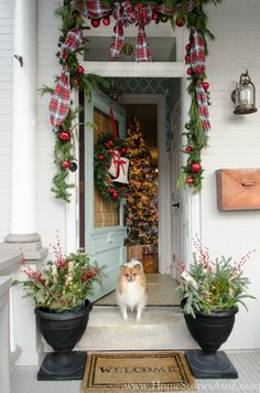 Best Farmhouse Christmas Decor DIY Ideas anyone can accomplish to make their homes farmhouse festive! These cozy Farmhouse Christmas Decor DIY Ideas are just what you need to get your home ready for the holidays and best of all, are easy and cheap! Decoration Christmas, Christmas Porch, Farmhouse Christmas Decor, Christmas Bows, Magical Christmas, Outdoor Christmas, Rustic Christmas, Simple Christmas, Beautiful Christmas