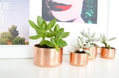 DIY Mini Copper Planters via Poppytalk