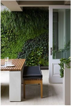 """Love the """"green"""" wall"""
