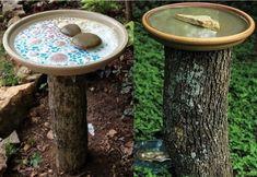 Idées recyclages et décorations souches d'arbres Backyard Birds, Garden, Outdoor Decor, Pin, Nature, Stump Table, Wood Stumps, Garten, Naturaleza