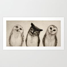 There should be just enough space to hang on the wall opposite from K's room. She'll get to see it everyday. The Owl's 3 Art Print by Isaiah K. Stephens - $15.00