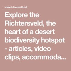 Explore the Richtersveld, the heart of a desert biodiversity hotspot - articles, video clips, accommodation, travellers' personal stories and information on towns and services in the Rictersveld region. Mountain Zebra, Interactive Map, Video Clip, World Heritage Sites, Deserts, Articles, Camping, Explore, Heart