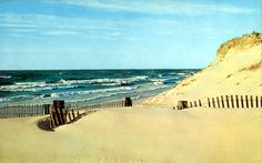 lake michigan beach scenes - Google Search