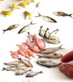 Poissons #miniature #fish