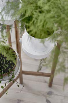 SATSUMAS plantenstandaard | #IKEA #IKEAnl #inspiratie #wooninspiratie #woonkamer #bamboe #wit #urbanjungle #urbangardening #planten #plantenparade #closeup