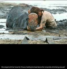 She stayed with her horse holding it's head above water until rescued...that's love