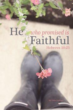 He is Faithful - Spiritual Bible verse of faith and inspiration.  Scripture Hebrews 10:23