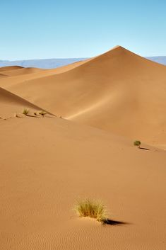 Images Of Desert, Desert Art, Desert Design, Desert Sunset, Deserts Of The World, Symbolic Art, All Falls Down, Photoshop Pics, Orange Aesthetic