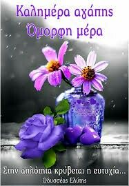Splash of Colour Flowers Nature, Beautiful Flowers, Beautiful Pictures, Splash Photography, Cute Photography, Purple Love, All Things Purple, Purple Style, Splash Images