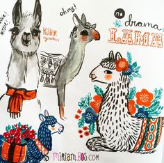 Llama - Miriam Bos