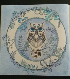 Colored By S Field Johanna Basford Enchanted Forest Owl With Barnes Nobles Watercolor Pencils And Staedtler Noris Club