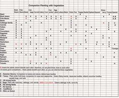 Companion Planting Chart, Companion Gardening, Planting Vegetables, Growing Vegetables, Vegetable Gardening, Veggies, Organic Gardening, Container Gardening, Gardening Tips