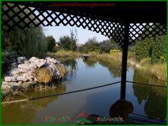 Einfamilienhaus mit  Pool und Teich in West-Ungarn !