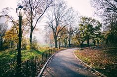 Central Park  #nyc #gmgtravels #willjourney #centralpark
