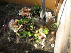 Surprising Things You Can Compost:  Paper products: paper towel, coffee filters, paper bags, news print, cardboard. It's best to shred paper products if possible to speed breakdown. Even printed papers are safe to compost because most modern inks and dyes are vegetable based.  Egg shells.  Egg cartons.  Tea bags.