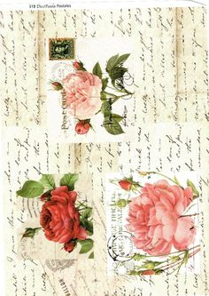 Letters&Roses
