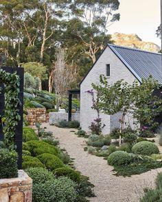 Farm Gardens, Outdoor Gardens, Native Gardens, Cottage Garden Plants, Home And Garden, Australian Native Garden, Australian Garden Design, Casa Patio, Farmhouse Garden
