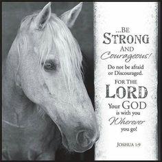 Love this verse