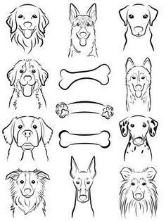 Drawing Techniques Dog / Line drawing Stock Vector - 31655863 - - Millions of Creative Stock Photos, Vectors, Videos and Music Files For Your Inspiration and Projects. Dog Line Drawing, Dog Line Art, Dog Art, Dog Drawing Simple, Husky Drawing, Animal Drawings, Art Drawings, Desenho Tattoo, Dog Illustration