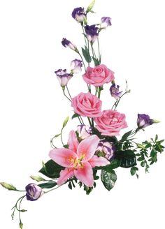 Resultado de imagem para flores png