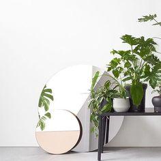 Tässä ei taida olla kasvit keskipisteessä vaan kauniit peilit.