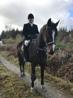 Romeo hunting with the Grallagh Harriers, Nov Cross Country Jumps, Beach Rides, Tally Ho, Over The Years, Equestrian, Ireland, Hunting, Horses, Horse