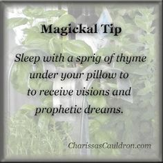 Sleep with a sprig of thyme under your pillow to receive visions and prophetic dreams.