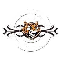 fun Tiger Artwork, Tiger Design, Fun, Accessories, Lol, Funny