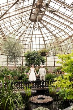 now this is a green house so bueatiful .lots of windows and plants