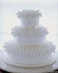 Chrysanthemum Weddin