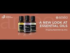 Ameo Essential Oils by Zija International will be officially launched at the end of September 2015. However, we are building our team while still in pre-launch. Come join us in our #teamtruevitality and be part of a founding wholesale member of Ameo Essential Oil. Visit http://moringamate.com/products/ameo-essential-oils/ or message me for more information.