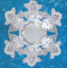 Water crystals - Sun